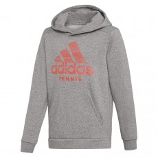 Adidas Junior Hoodie Grey 2019