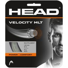 Head Velocity MLT 12m